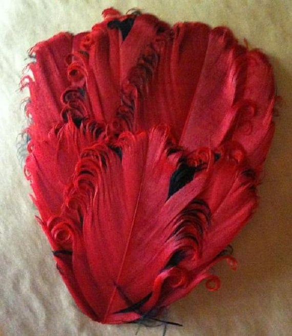 Red and Black Nagorie Feather Pad