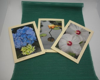 Set of three photo greeting cards,originals, blank, color paper insert, matching glossy ecru envelopes.