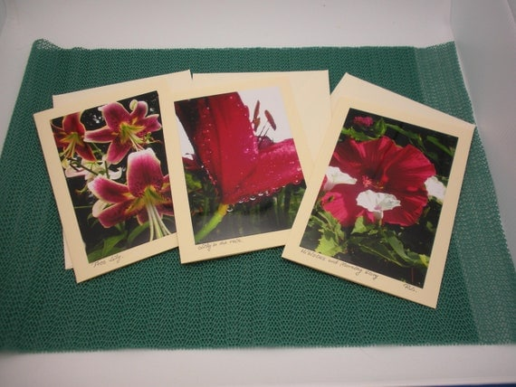 three photo greeting cards, blank with pink insert, matching ecru envelopes