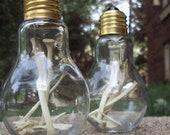 Bones in a Light Bulb - Taxidermy Home Decor