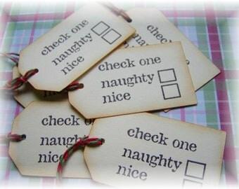 Naughty or Nice Tags (8)