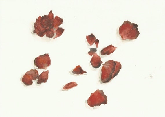 "Red Petals, Wilted, an Original Watercolor, 8""x10"""