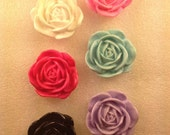 35mm FLoWeRs MiX Kawaii Flatback Resin Cabochon 6 pieces USA SHIPPING 50% oFF CoUpOn CoDe SALE50