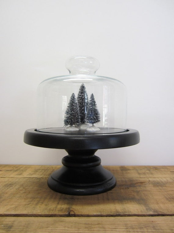 Black Wood Pedestal with Glass Cloche Dome Display Stand