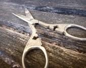 Hollow Ground Embellished Cross Scissors