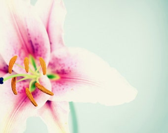 Macro Photography Abstract Flower Photo Spring photography nature photography Pink Lilly  Mint Wall art  Fine Art Photography print