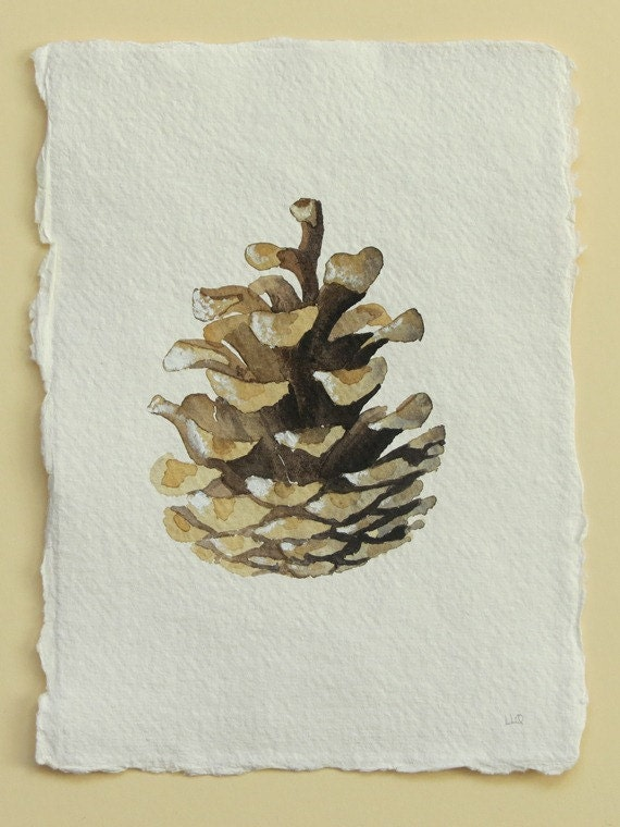 Pine cone original watercolour illustration study painting for How to paint pine cones for christmas