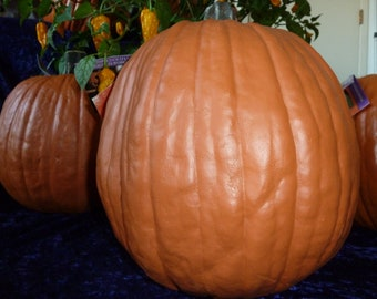 Artificial Pumpkins medium,Real looking  12 inch Tall 34 inch round .