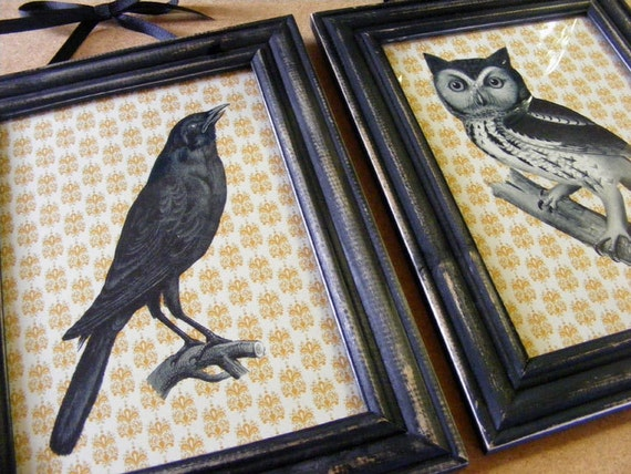 Victorian Style Owl & Crow Framed Prints