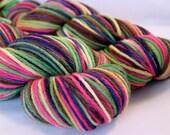 Hand Dyed Yarn Kingfisher Merino Neopolitan Dream