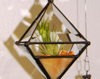Pyramid Beveled Glass Orb Air Plant Planter with Amber Accent.
