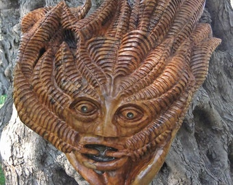 The Green Man, Olive Wood Sculpture