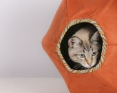 Cat Ball for the Curious Feline