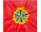 """Small Tulip original acrylic painting 3""""x3"""""""