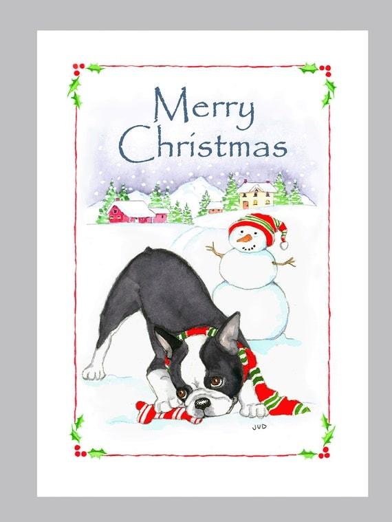 Boston Terrier Christmas Cards Box of 16 Cards & Envelopes
