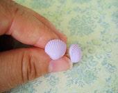 Light Purple Sea Shells Earring, Shells Earring, Sea Earrings, Sea Shells Jewelry, Sea Jewelry - 10mm