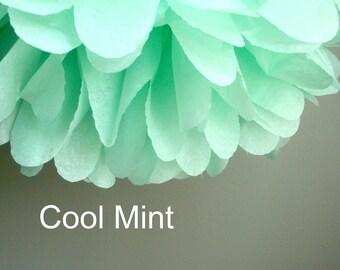 1 Cool Mint Tissue Paper Pom Pom