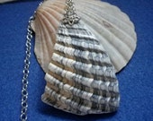 Gray and Tan Outer Banks Shell Necklace