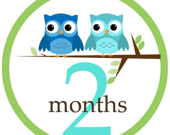 Baby Boy Owls - 003 - Baby boy owl monthly iron on or sticker decal transfers baby shower gift blue teal