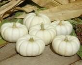 Reserved Handmade Clay White Pumpkin