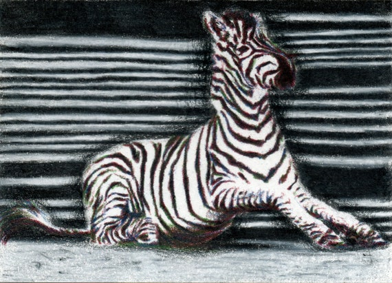 Original ACEO for the WWF - 'Can't Tie Me Down' zebra illustration (Day 22)