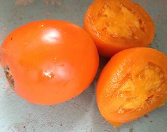 Moonglow Heirloom Tomato Seeds Grown to Organic Standards Rare Nice Slicer Best Flavored Orange