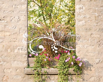 NEW ITEM 6ft x 7ft Vinyl Photography Backdrop / Flowers in the Void WINDOW on Wall