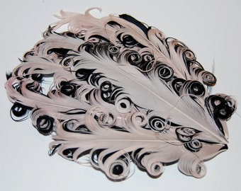 Curly Feather Pad - Two Tone Peach on Black   FP147- (1piece)