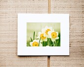 Matting Service for 5x7 Prints - Add a Mat - Ready for 8x10 Frame - Mat Board