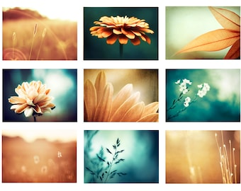Nature Photo Set, 9 Photographs, fall autumn flowers orange blue teal photography brown turquoise aqua dark rust gallery wall set modern