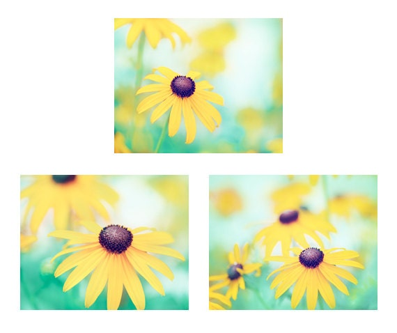 Set of Three Flower Photographs,  spring photo yellow nursery turquoise teal blue mint green aqua photography floral nature prints wall art