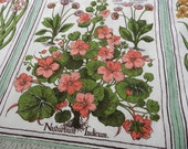 Vintage Botanical Flowers Latin Names Screen Print Cotton Fabric for Sewing Projects 6 panels