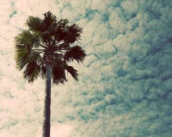 Palm tree canvas, palm tree print, palm tree photo tropical photo, turquoise wall art, retro palm, Southern California photo