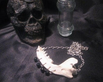 Real Animal Bone Necklace ( Jaw Bone Necklace)