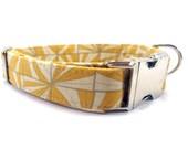 Dog Collar, DIAMOND in GOLD, Handmade Dog Collar