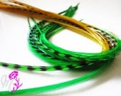 "SALE 1 X-Long Salon Grade Tie Dye Green Yellow Gold Grizzly 8-12"" Feather Hair Extension"