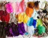 HUGE SALE Mixed Feather Grab Bag Assortment Lot - Grizzly Peacock Pheasant Iridescent