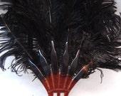Incredible 1910s 1920s Antique Tortoise Colour Fanned Black Ostrich Feather Plume Hair Comb Head Piece Tiara - Glamorous Vaudeville