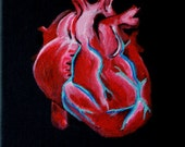"""Anatomically Correct Heart """"A Loving Muscle"""" LIMITED EDITION print (ready to hang) by Erin Paul"""