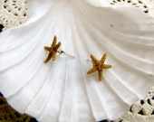 Mermaid Genuine Starfish on Sterling Silver Post Earrings