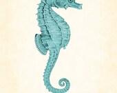 Vintage Seahorse in Aqua Natural History Art Print 8 x 10