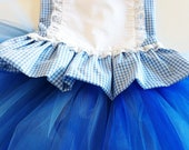 first birthday Disney Vacation Tutu  costume wizard of Oz DOROTHY Alice in wonderland corset dress outfit sz  6 mos 1,2,3,4,5