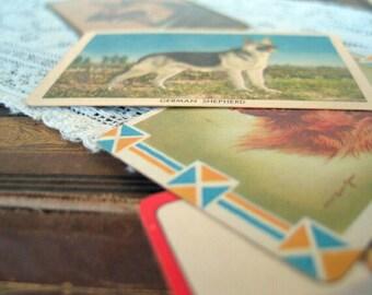 Vintage German Shephard Cards