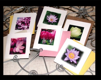 Square Cards, Mini Cards, Blank Cards, Greeting Cards, Mini Square Cards, Mini Square Envelopes, Blank Cards by LindaGeezFlowerPower