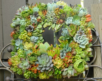 "Succulent Wreath Square Succulent Wreath- 15 "" Square Succulent Wreath Fall Wedding Autumn Wreath Home Decor"