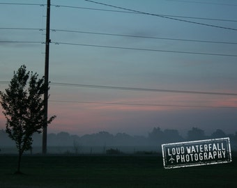Morning Mist, Rural Travel, Oklahoma Dawn Landscape, Trees, Telephone Wires, Mist 8x12  Photograph