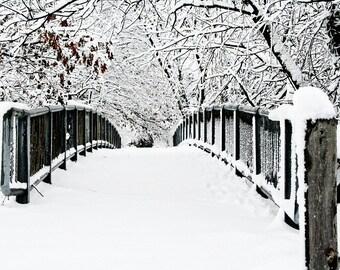 Winter Landscape Snowy Trees Lacey Branches Snowy Path Bridge Rustic White Gray Grey Black Snow,  Fine Art Print