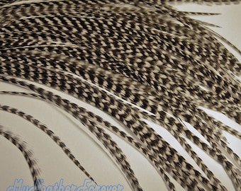 Black white GRIZZLY 10 FEATHER extension 9'' -12 '' long 4 bead