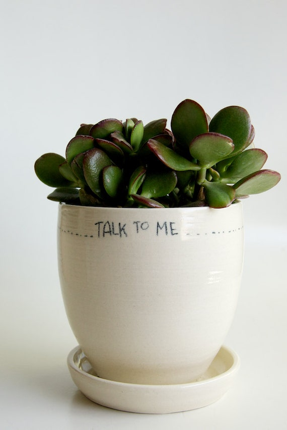 White Planter and Saucer- Speech Bubble- Message