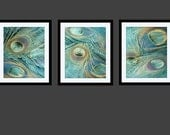 Peacock, Peacock Art, Peacock Print, Peacock Feather Art Photography Triptych 16x20 11x14 8x10 5x7 turquoise Aqua Blue Green Gold Lavender